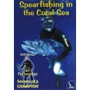 Spearfishing In The Coral Sea